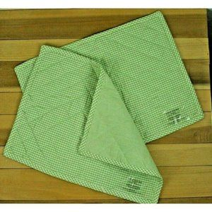 NEW Pottery Barn Kids Placemats Set of 2 Gingham Green White Cotton